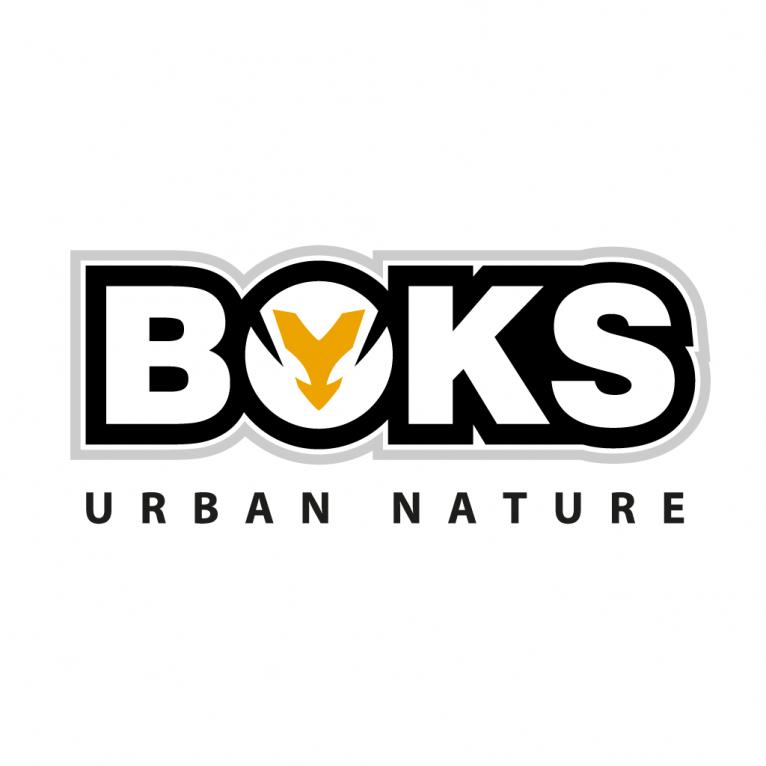 Boks, clothing brand vector logo design