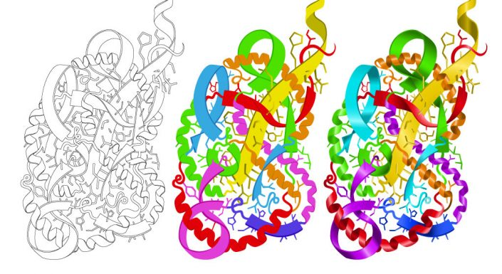 Lung designed with proteins illustration