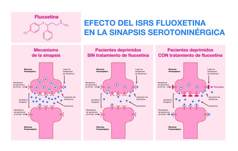 Medicine and health synapsis infographic design